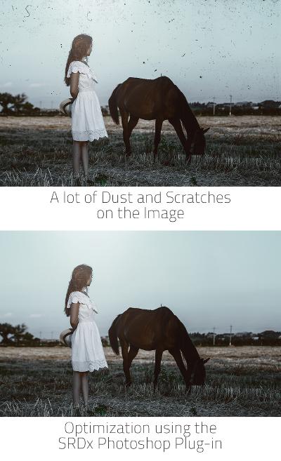 vorher_nachher_horse_hoch_en_small
