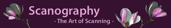 scanography_en