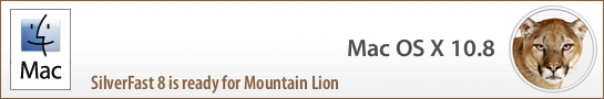 banner_mountain_lion_en